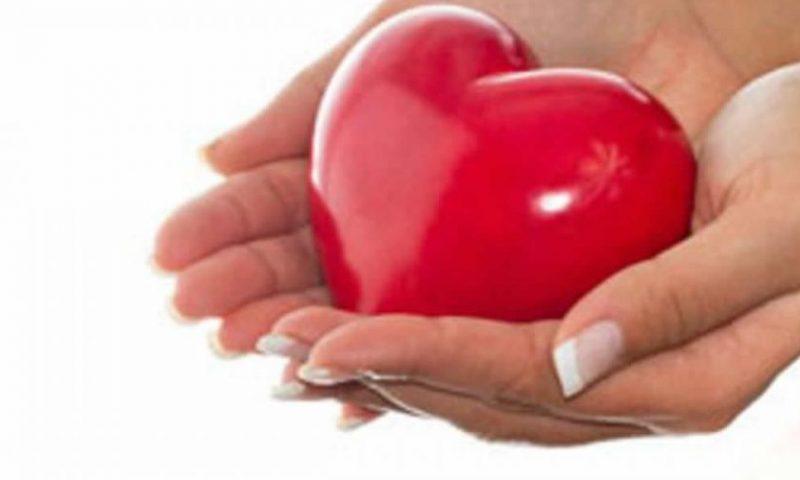 Doação de Medula Óssea – Requisitos e Como ser Doador